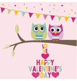 Valentines day owls vector image vector image