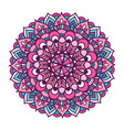 color ornament mandala vector image