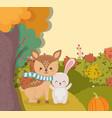 cute deer with rabbit pumpkin forest hello autumn vector image vector image