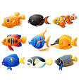fish cartoon set vector image vector image