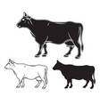 hand drawn cow set vector image vector image