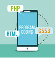 program coding website vector image vector image