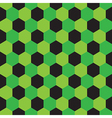 Football or Soccer Surface Pattern vector image