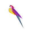 colorful abstract parrot vector image vector image