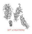 Ornate Set of Stylized and Abstract Zentangle vector image vector image