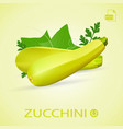 set of fresh ripe zucchini with leaves isolated on vector image vector image