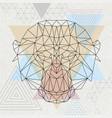 abstract polygonal tirangle animal monkey vector image