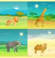 animals background set vector image vector image