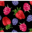 pattern with bright berries vector image vector image