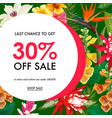summer sale tropical banner promotion discount vector image vector image