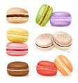 isolated macaroon goods set vector image