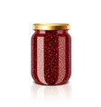 jam jar isolated vector image