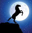 a horse on top of the mountain vector image