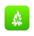 bonfire icon digital green vector image vector image