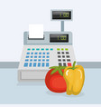 cash register with groceries vector image