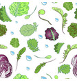 lettuce pattern vector image vector image