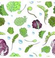 lettuce pattern vector image