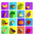 Modern fruits and vegetables icon set vector image vector image