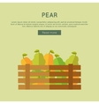 Pear Web Banner in Flat Style Design vector image vector image
