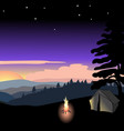 sunset of a summer night vector image vector image