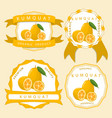 the theme kumquat vector image vector image
