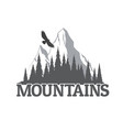 coniferous forest silhouette with mountain peak vector image