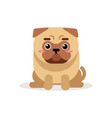 Cute cartoon pug dog character sitting vector image