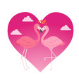 flamingo couple in love cartoon animal lovers vector image vector image