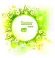 Summer light background with daisies vector image vector image