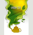 teapot with aromatic green tea paper art vector image vector image