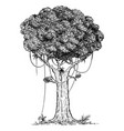cartoon drawing tree from rain forest