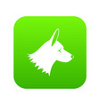 collie dog icon digital green vector image