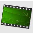 Film frame with green leaf and drops vector image vector image