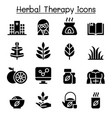 herbal therapy hospital icon set vector image vector image