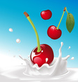 splash of milk with cherry - with blue backg vector image