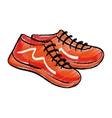 Sport sneakers accesorie vector image