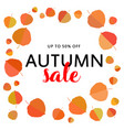 autumn sale banner with autumn leaves on white vector image