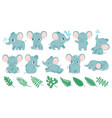 baby elephants cute cartoon animal and tropical vector image vector image