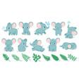 baelephants cute cartoon animal and tropical vector image vector image