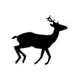 black silhouette of running reindeer isolated on vector image vector image