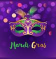 bright mardi gras background vector image
