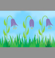 flowers on the background of the sky vector image vector image