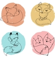 Fox characters cute lovely vector image vector image