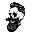 hand drawn of bearded skull isolated on white vector image vector image