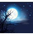 Night sky with a full moon and tree vector image