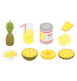 pineapple icons set isometric style vector image vector image
