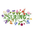spring background floral card with garden flowers vector image