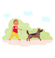 walking dog in park summer outdoor walk pet vector image vector image