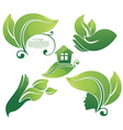 Collection of green leaf images vector image