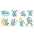 dreaming elephant baby elephants sleep on cloud vector image vector image